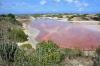 6-lagune-rose-blanquilla.jpg
