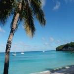 Bouteille à la mer – «D' un B» ( OVNI 395 ) aux Antilles